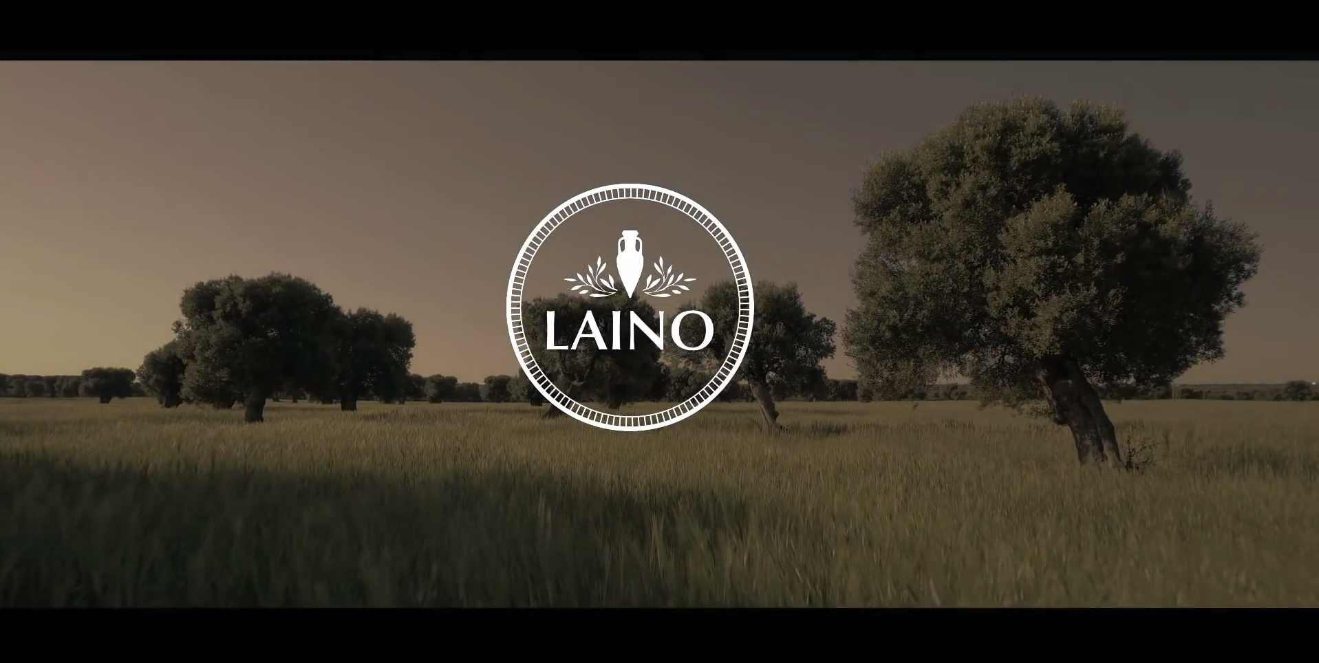 Campagne laino